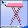 Designer new products light weighted dog grooming table