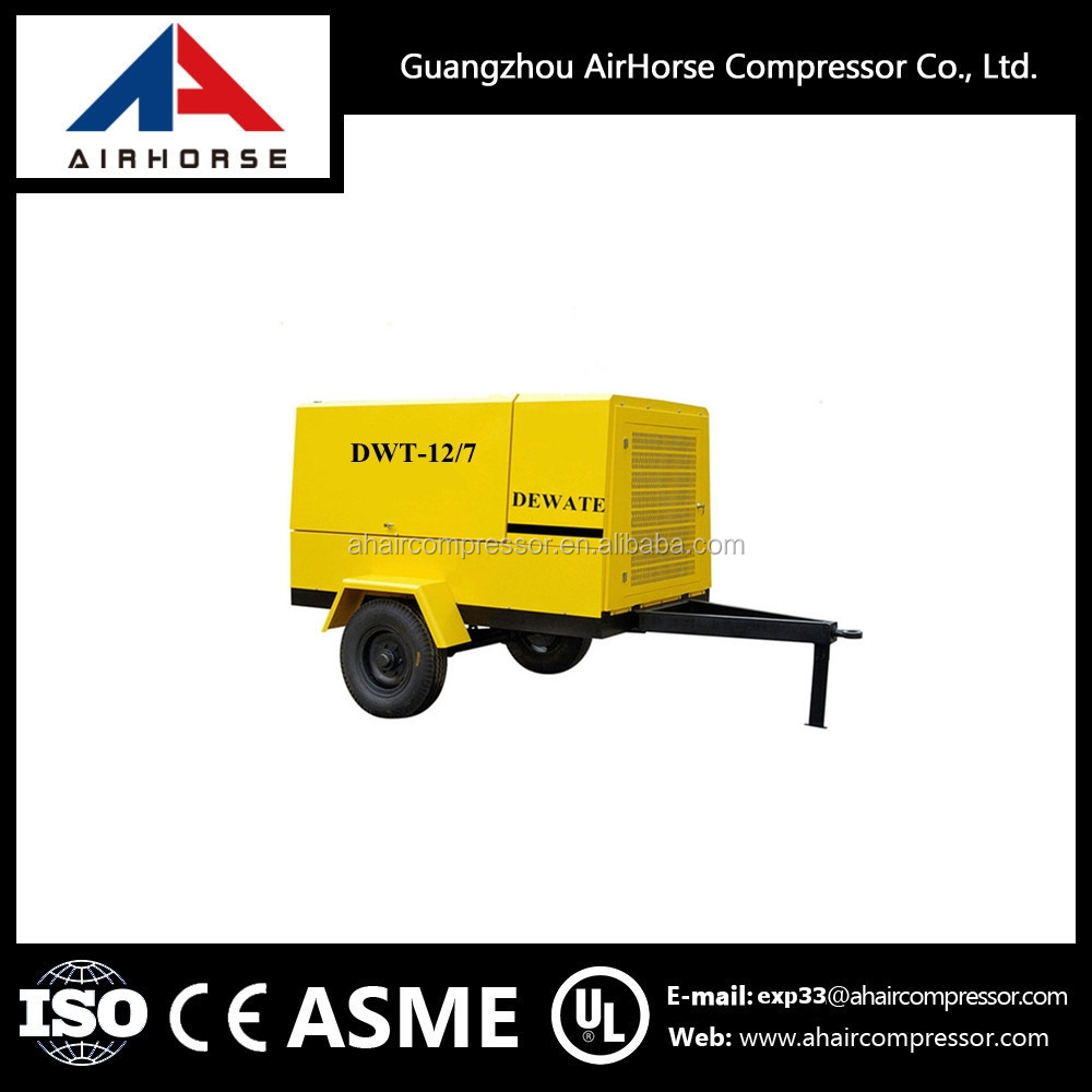12/7 Famous Brand Diesel Engine Driven Portable Air Compressor (Screw Type)