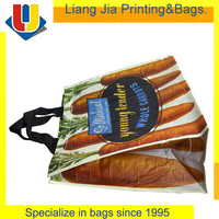 Reusable Cheap PET Carrier Tote Shopping Bag Made In China