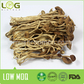 hot sale dried edible Tea tree mushrooms
