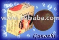 Get Proven Results with Ganozhi SOAP