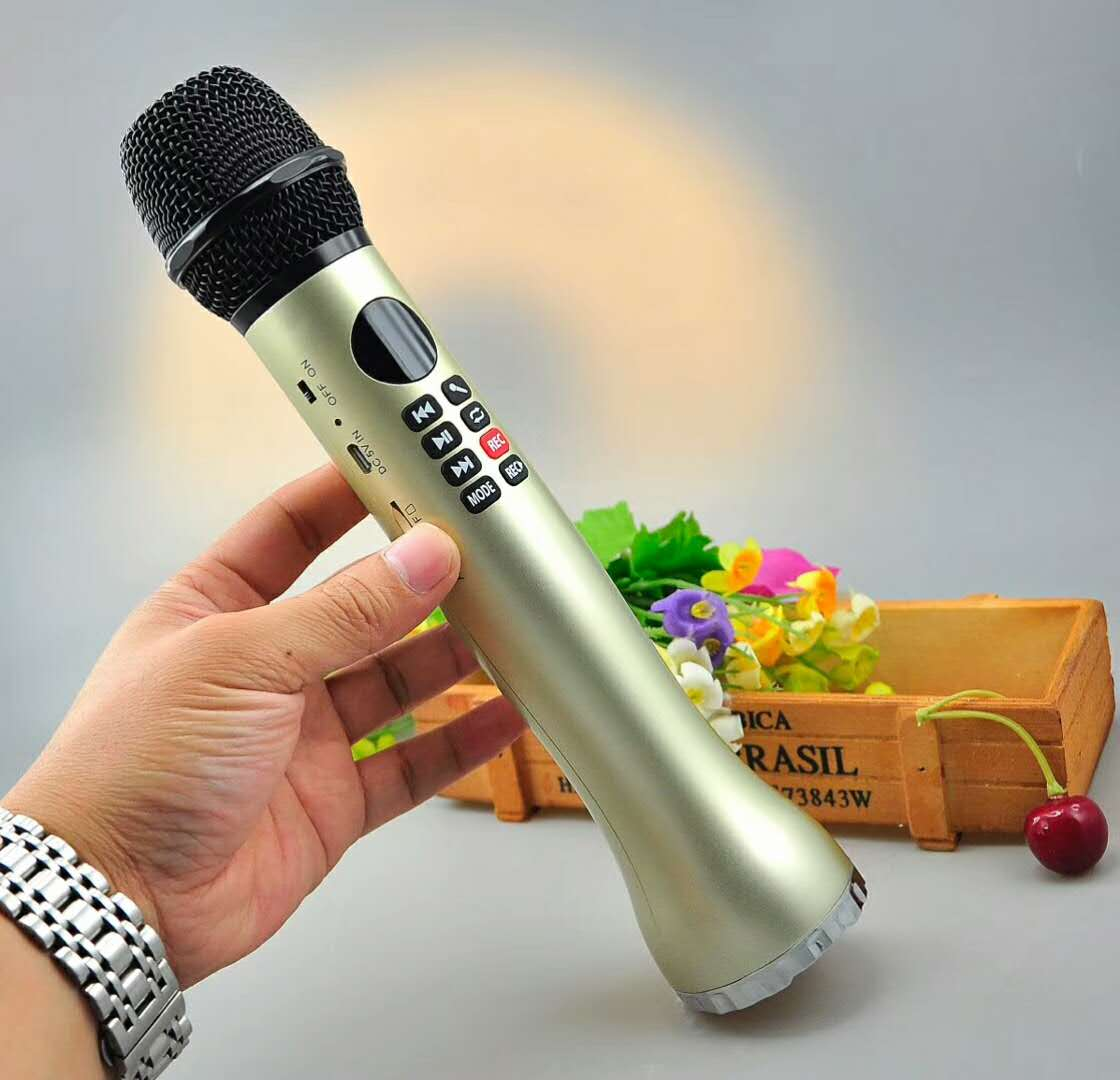 High quality 9 W,15W trumpet output, with FM New Karaoke bluetooth microphone speaker,Professional sound effect,