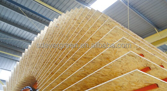 4*8ft OSB board/sheet 18mm prices FOB qingdao
