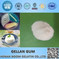 gellan gum a stabilizer used in ice cream