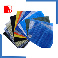 China High Quality PE Tarpaulin in Roll