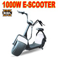 [KAXA Motos] Electric Scooter 800w Citycoco Scooter