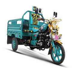 Luxury Cargo Tricycle,Three Wheel Motorcycle,Three Wheel Trike for Afghanistan market