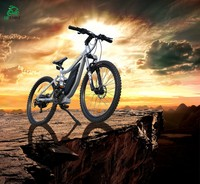 Tornado,Small bike, Big chance-chainless strong electric bike 800w