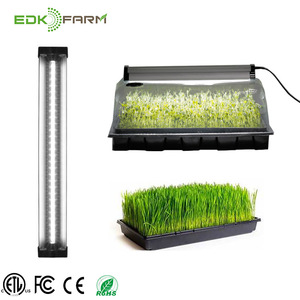 aquaponics commercial led vertical strawberry home indoor greenhouse hydroponic growing systems