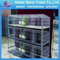 High quality poultry farming chicken coop