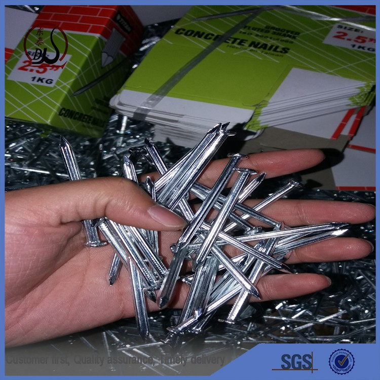 High quality galvanized steel concrete nails