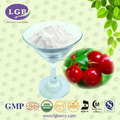 OEM CAPSULE, OEM TABLET,GMP Certificate bulk supply health supplement cranberry opc,