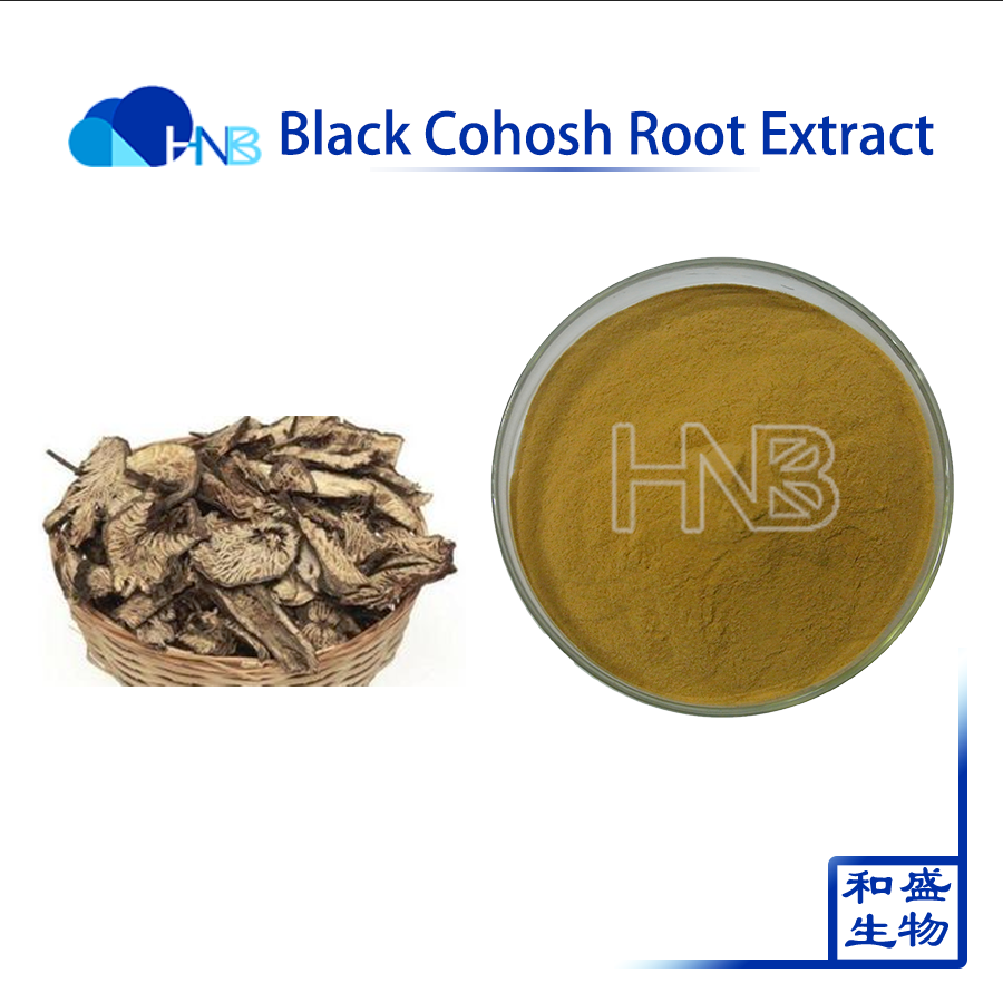 2017 best quality Black Cohosh Root Extract / Vernonia aspera ( Roxb. ) Buch.- Ham Extract
