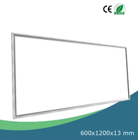 2x4 LED Ceiling Panel Light