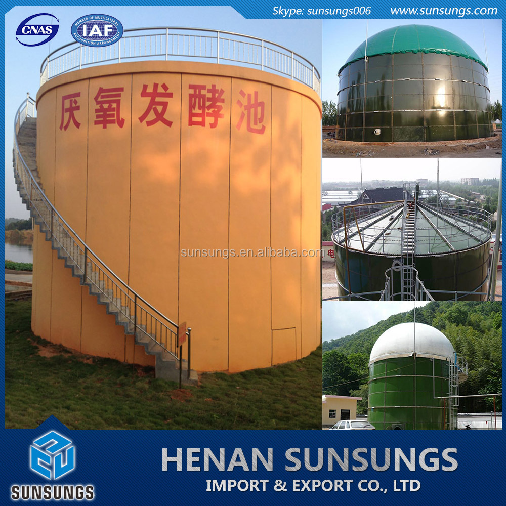 Industry fuel application biogas plant for generating electricity