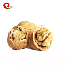 TTN wholesale buy shelled walnuts for sell
