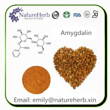 Factory Supply amygdalin b17 500mg tablets
