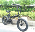 20inch folding electric bike