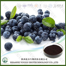 China factory supply 25%UV Anthocyanidins Bilberry Extract