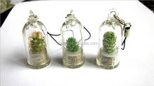 DEMI 2017 Wholesale Promotion gift plant baby keychain/pet cactus keyring/christmas baby Tree