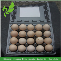 20 cell disposable plastic PVC egg packaging tray