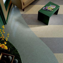 Eco-friendly Waterproof Colorful PVC Vinyl Flooring Roll
