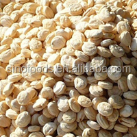Ren Shen Zi China Manufacturer Low Price Ginseng Seeds for Sale