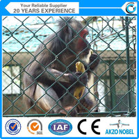 High quality chain link zoo animal fence(ISO 9001)