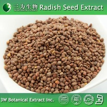 High Quality Extract Powder of Raphanus sativus Seed with Low Price