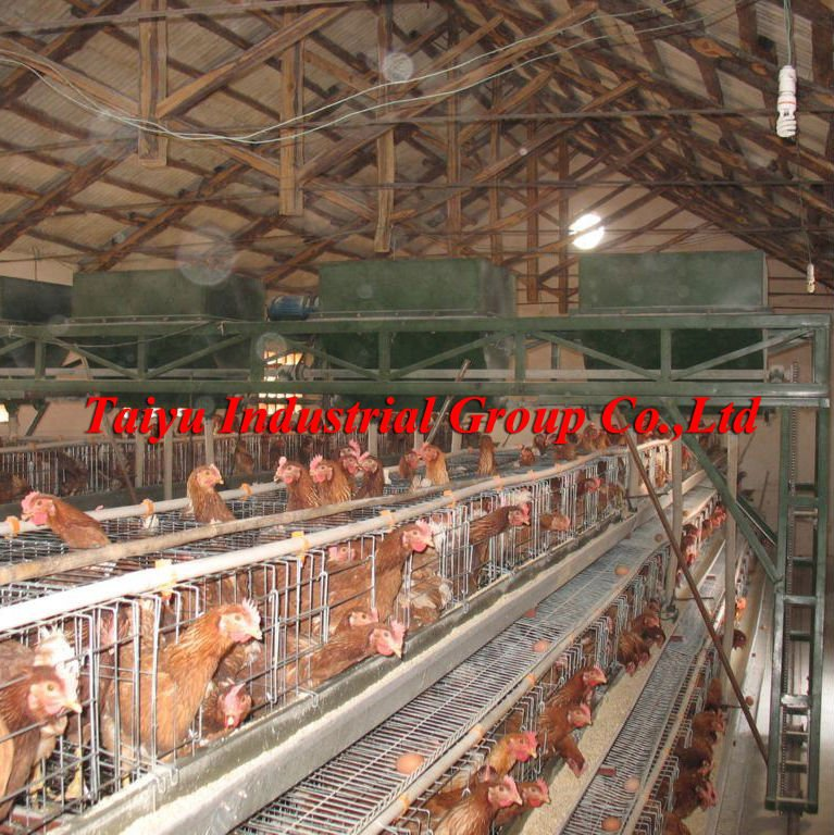 Chicken House Farm semi-automatic/automatic poultry farm layer cage - buy poultry