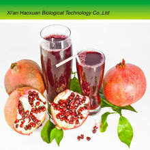 China supply pomegranate seed oil extraction powder