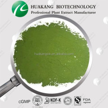 High Quality Chlorella Powder