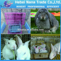 galvanized mesh rabbit cage from alibaba china