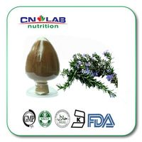 factory supply 100% Natural 25%,50%,90%,98% Ursolic Acid Supplier/rosemary Extract Manufacturer