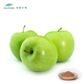 Apple Juice Powder , Turkish Apple Tea Powder , Apple Pectin Powder