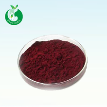 Promotion natural cranberry juice extract powder 25% 50% Proanthocyanidin