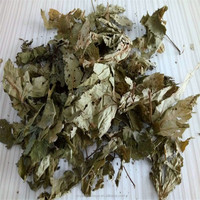 Good Reliable Supplier Herbal Tea Extract
