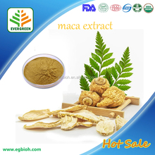 100%Natural Black Maca Extract,Black Maca Root Extract,Black Maca P.E.4:1~20:1