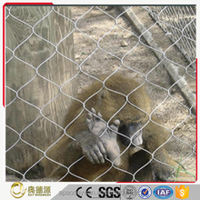 Decorative and protective stainless steel wire rope mesh for zoo animal cages