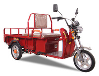 tricycle electric eec