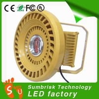 5 years warranty led motion sensor hall light