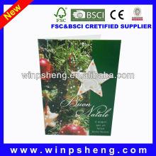 2013 christmas greeting card /christmas greeting card printing