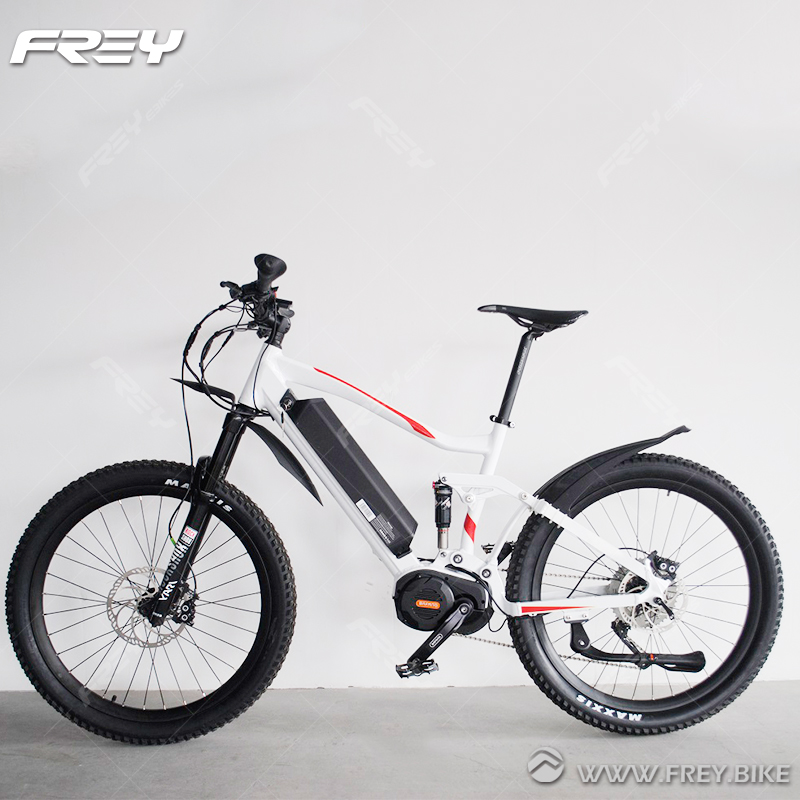 Professional Products Off Road Electric Bike 48v View Electric