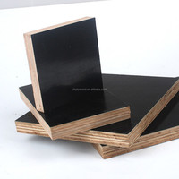 Waterproof exterior plywood for construction
