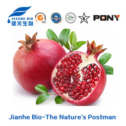 strong antioxidate and anti aging Pomegranates Husk/peel Extract polyphenols 40%, Ellagic Acid 40% 90% to be beautiful