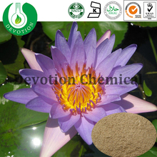 GMP Factory Blue Lotus Leaf Extract for medicine