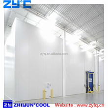Cold storage room with PU Insulation panels for vegetables/fish/meat