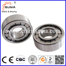 SL192318 Singer Row Full Complement Cylindrical Roller Bearing