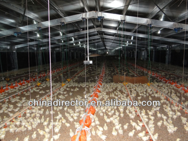 light steel structure prefab feeding broiler chicken house and building and farm