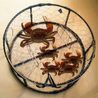 Stainless steel snow crab pot